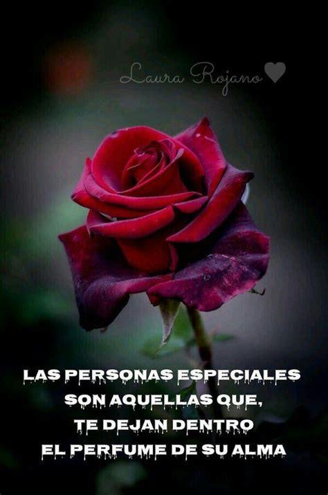 45 Imágenes de Rosas Rojas Hermosas