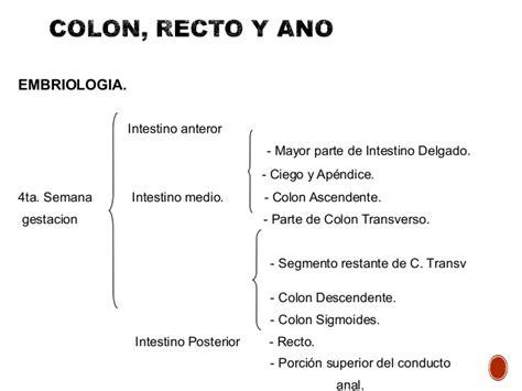 48. Algoritmo para diagnóstico clínico de enfermedades del ...