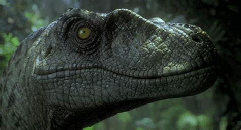 [48+] Jurassic Park Wallpaper Dinosaurs on WallpaperSafari