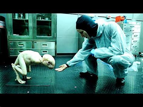 5 Animales que Fueron Creados por el Ser Humano ...