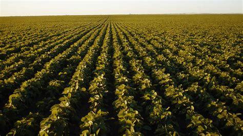 5 claves de la agricultura de precisión que debes conocer ...