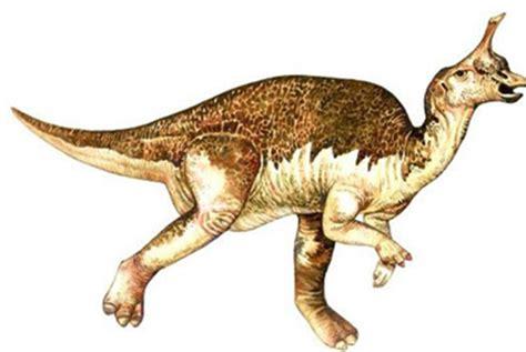 5 Dinosaurios mas extraños   Ciencia y Educación   Taringa!