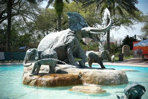 5 Family Friendly Destinations in New Orleans   GoNOLA.com