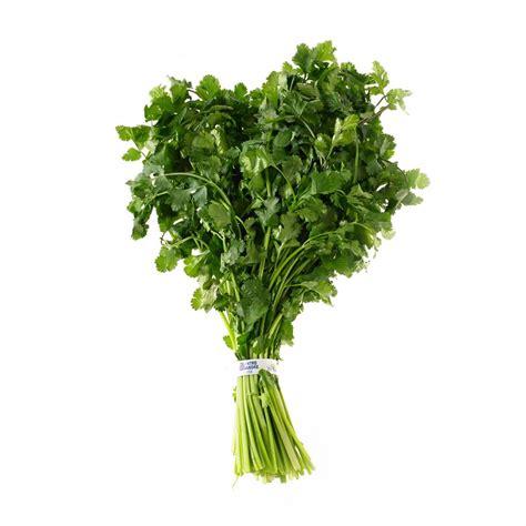 5 hierbas aromáticas muy sencillas para plantar en casa ...
