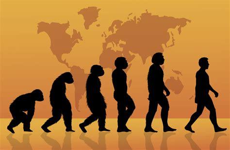 5 misterios de la evolución humana   VIX