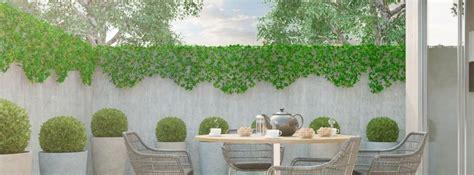 5 Plantas de exterior para todo el año   canalHOGAR