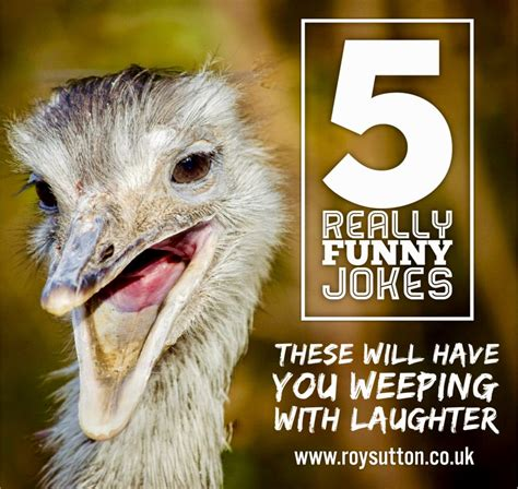 5 really funny jokes that will have you weeping with ...