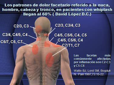 5 vertebra toracica areas efectos   Buscar con Google ...