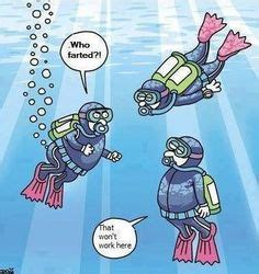 55 Best Diving Humor images | Humor, Diving, Bones funny