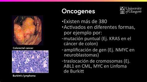 6.10   Ejemplos de Oncogenes y GST | Nutrición y estilo de ...