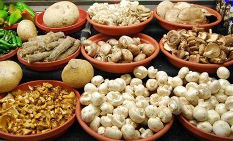 6 Cancer Fighting Medicinal Mushrooms   Medicinal Mushies
