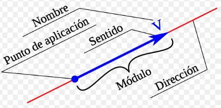 6 características de un Vector