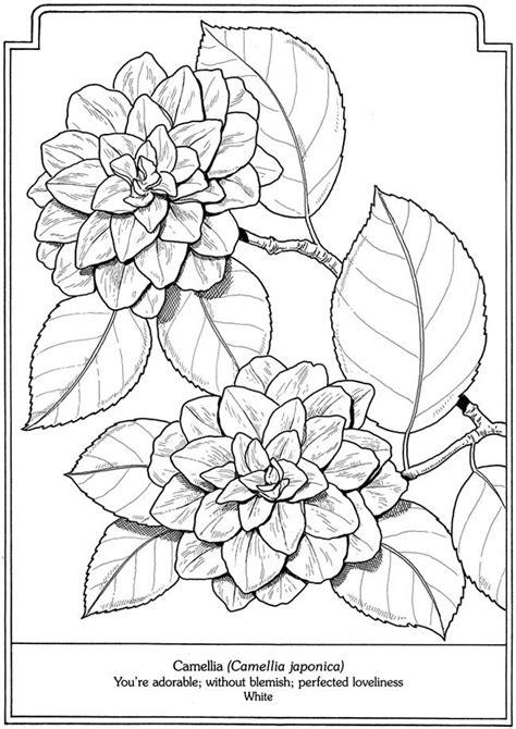 60 Desenhos para Adultos   Riscos   Desenhos para colorir ...
