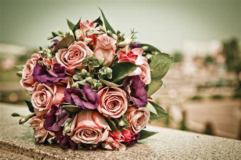 7 cosas que debes tener en cuenta para las flores de tu ...