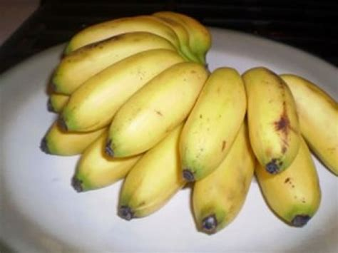 7 Types of Bananas You Probably Didn t Know About