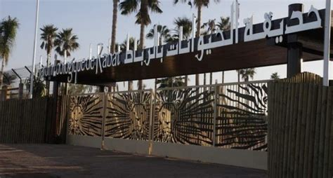 7 Year Old Girl Killed by an Elephant in Rabat Zoo