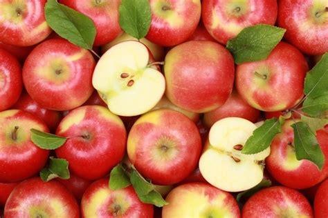 8 Alimentos que producen gases   Tua Saúde