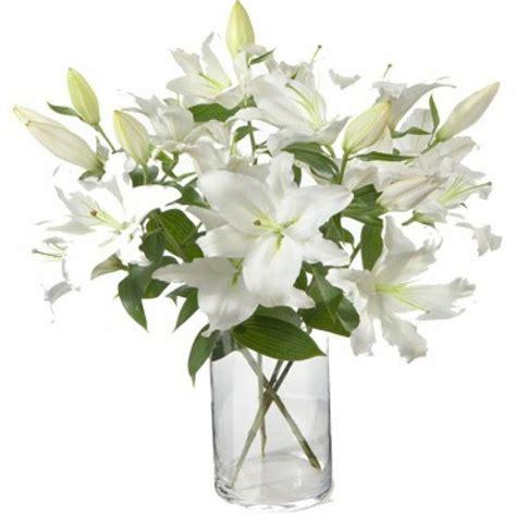 8 flores para regalar en San Valentín | Plantas