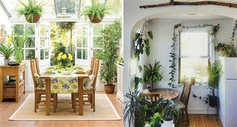 8 plantas para decorar la cocina que darán productividad