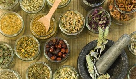 8 Remedios caseros para la inflamación de los ganglios en ...