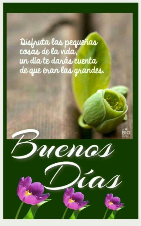 817 best images about BUENOS DÍAS. on Pinterest