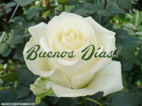 97 best Tarjetas de buenos dias images on Pinterest   Buen ...