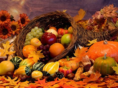 A Basket Of Fruit Wallpapers High Quality | Download Free