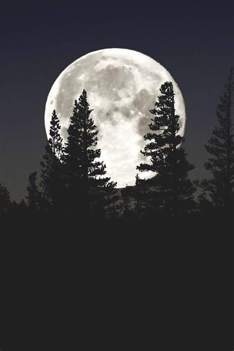 A Full Moon Pictures, Photos, and Images for Facebook ...