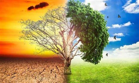A mudança climática afetará dramaticamente a agricultura e ...