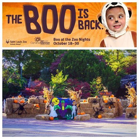 A St. Louis Realtor s Adventures, Tips, and Finds: Boo at ...