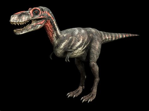 A Third of Dinosaur Species Never Existed? | Interesting ...