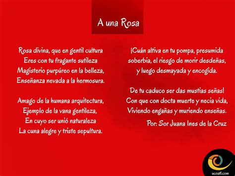 A una Rosa por Sor Juana Ines de la Cruz :D | Poemas ...