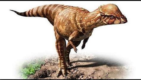 ABC: Los dinosaurios más raros descubiertos en los últimos ...