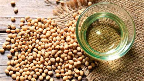 Aceite de soja: características nutricionales y beneficios ...
