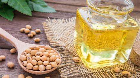 Aceite de soja transgénica produce menos obesidad y ...
