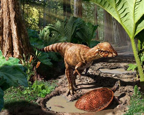 Acrotholus   New Dinosaur Species from Canada ...