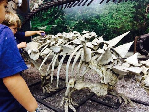 Actividades de Dinosaurios para niños – Una Vida Simple