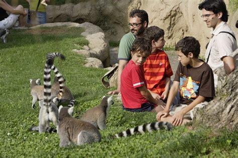 Actividades de ocio familiar en Bioparc Valencia