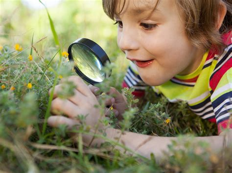 Activities for Strengthening Observation Skills ...