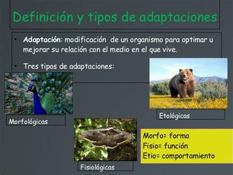 Adaptaciones de los seres vivos al medio