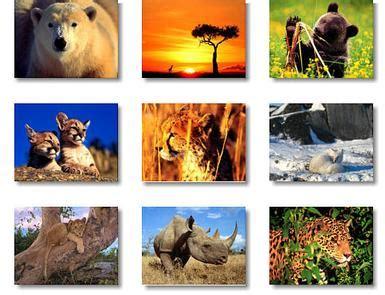 adaptaciones de los seres vivos en la naturaleza