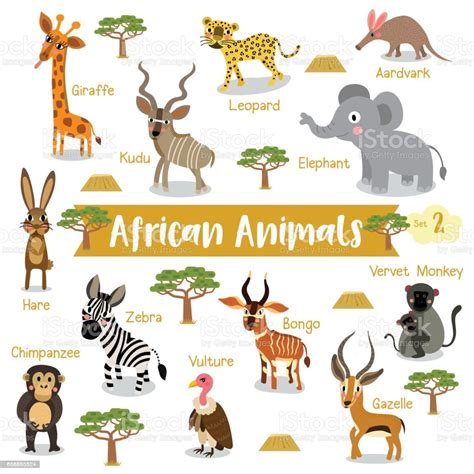 African Animals Cartoon With Animal Name Vector ...