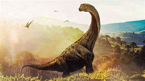 Age of Dinosaurs | Mini Museum