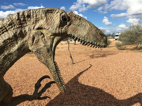 Age of Dinosaurs Museum Half Day Tour   Red Dirt Tours