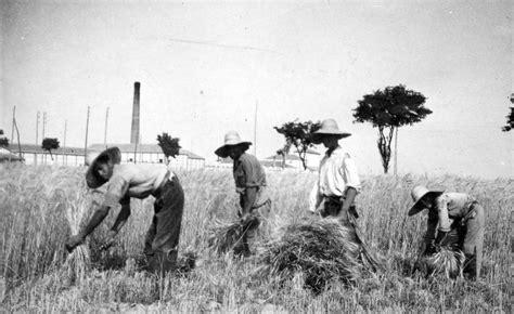 Agricultores en España. | España, Siglo xix, Fotos