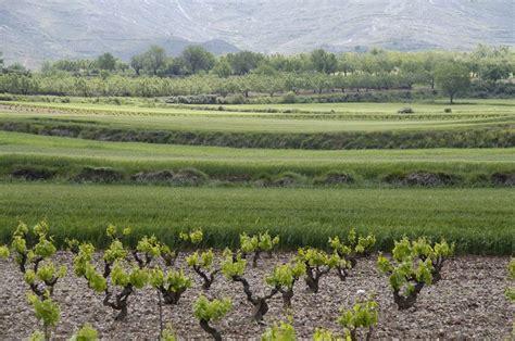 Agricultura abonará la próxima semana 14 millones de euros ...