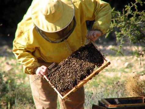 Agricultura amplía en más de 400.000 euros las ayudas para ...