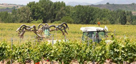 Agricultura anuncia complementos de ayudas estatales y ...