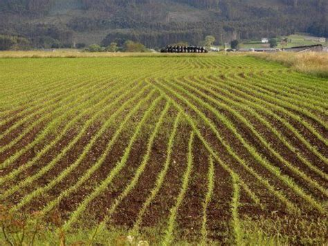 Agricultura de precisión en Asturias   Comercial Agropres