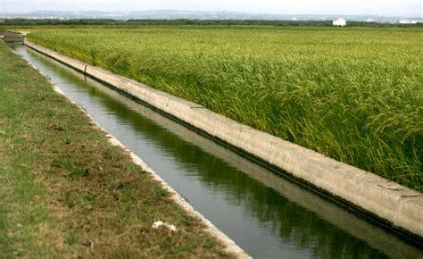 Agricultura destina 6,5 millones a financiar proyectos de ...